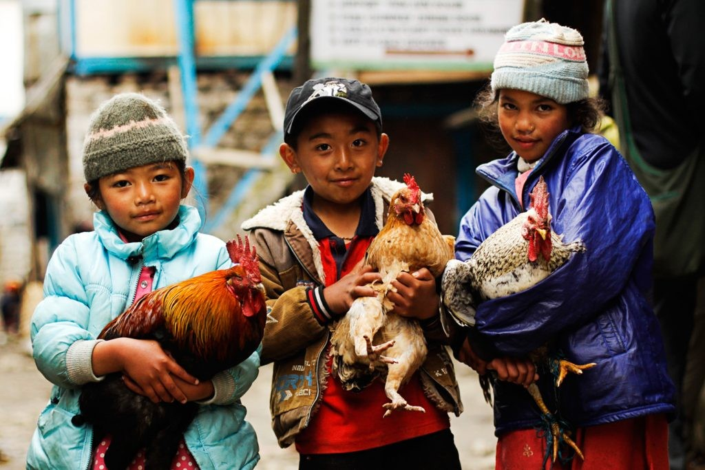 Nepal-justyna-bronowska-www.tuptam.wordpress.com_-1024x683