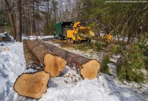 Maszyna do rozdrabniania drzewa