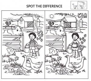 Znajdź 8 różnic i pokoloruj