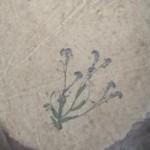 krok_iv_suszenie_papieru_czerpanego_21105
